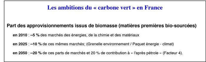 Les-ambitions-du-carbone-vert