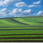 la bio économie des champs