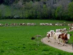 Agroécologie, économie circulaire