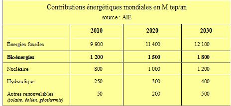 bioénergie n°11